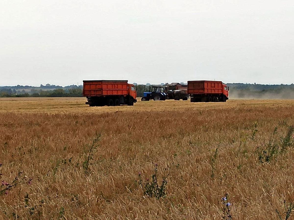 КАМАЗ в сельском хозяйстве