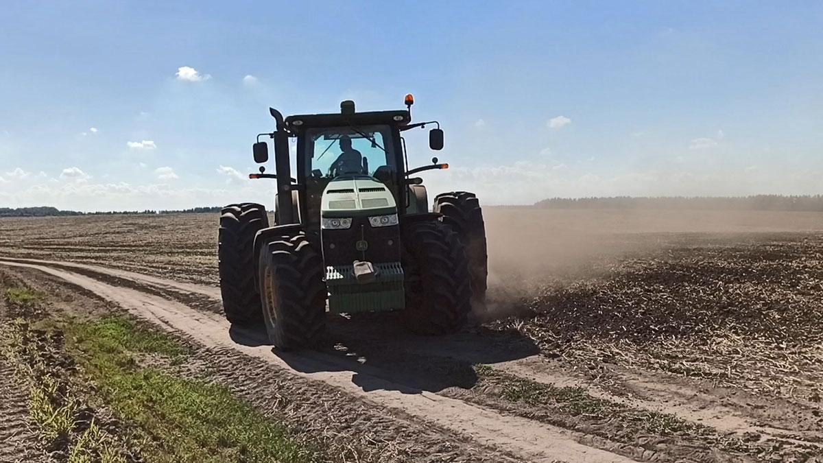 Опыт возделывания смешанных посевов кукурузы с зернобобовыми культурами