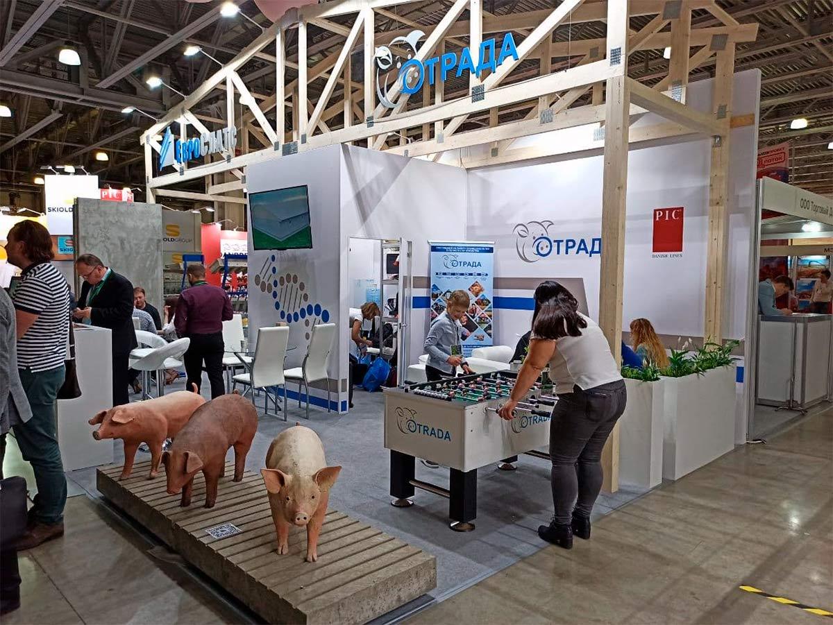 Спрос на свинину бьет все рекорды
